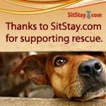 SitStay.com